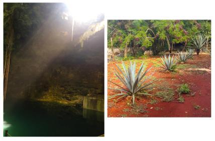 Mexican adventures 2