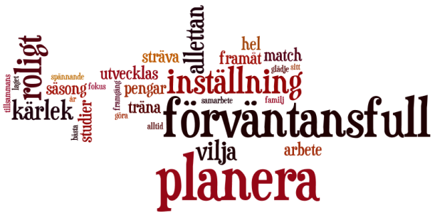 lindendam_wordcloud